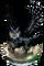 Watch Owl + Figure