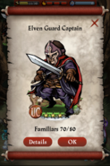 Elven Guard Captain Capture Screen