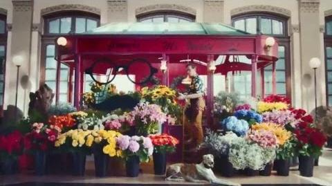 Blossom Blast Saga Flower Stand 30 US TV Commercial