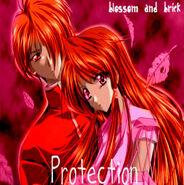 BrickandBlossomprotection61111111111