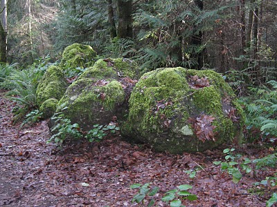 File:Mossy Boulders.png