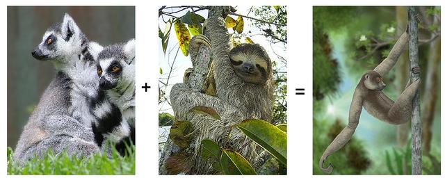 File:Lemur Sloth.png