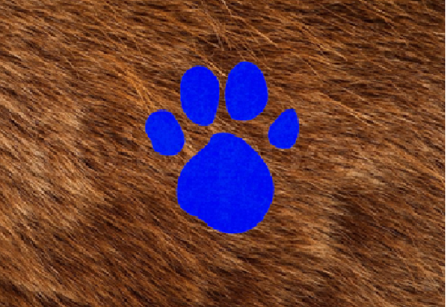 File:Fur (2nd Blue's Clues).png