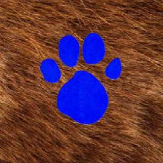 2nd Fur