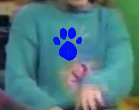 File:Turquoise Sweater (1st Blue's Clues).png