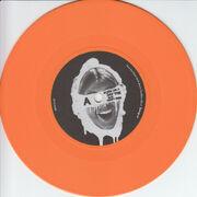 Bmsr bornvinyl disc