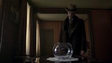 Nucky fishbowl