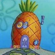 Archivo:Spongehause.jpg