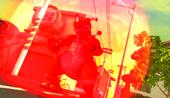 Vlcsnap-2012-07-14-17h04m30s149