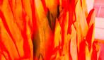 Vlcsnap-2012-07-22-14h10m16s75