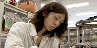 Kōhei Horikoshi