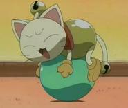 Cat Rinrin1