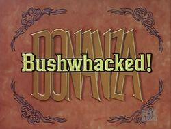 Bushwhacked000