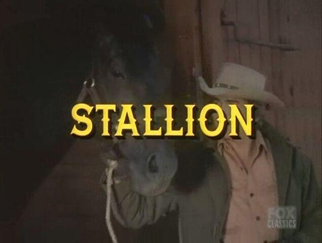 File:Stallion000.jpg