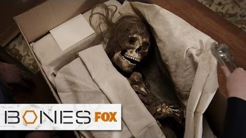"""Brennan Receives A Package Via Skeletal Express from """"The Ghost In The Killer"""" BONES"""