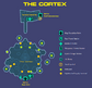 The Cortex Map.png