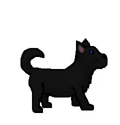 File:Blackpawno.2.png