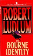 Bourne Identity 0