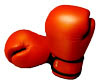 File:Icon-boxing-gloves.jpg