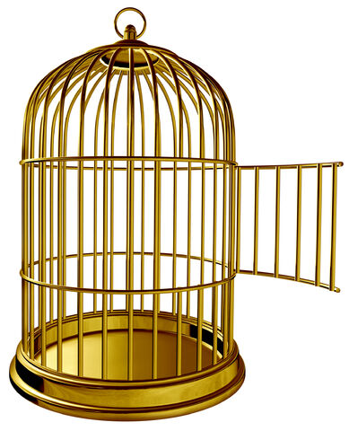 File:Cage.jpg