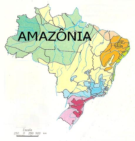 Arquivo:AmaZonia 001.png