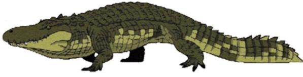 Arquivo:Purussaurusbrasiliensis.png