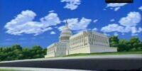 Washington D.C.