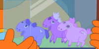 Pony Lords Battle Aquarium