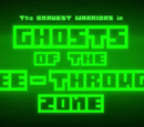 Ghosts of the See-Through Zone
