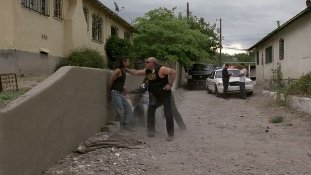 File:1x03 - Hank on a bust.jpg