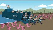 PITA navy