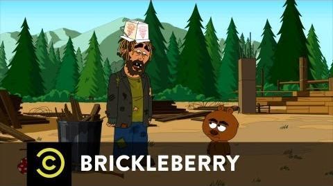 Brickleberry Hobo Larry