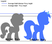 Ixhelcan and Normal Pony Diff