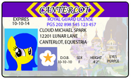 Cloud Spark License