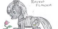 Raven Flowers