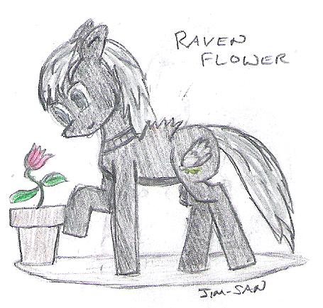 File:129718772374-Mini-Raven.png