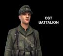 709-я пехотная дивизия