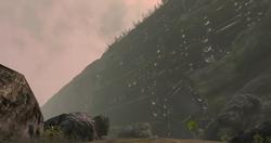 Screaming Wall Landmark