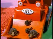 BobSavestheHedgehogs63
