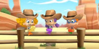 The Cowgirl Parade!/Images
