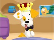 King Bubble Puppy