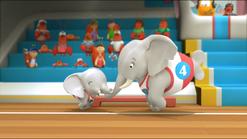 Elephant63