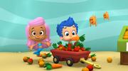Fruit Camp F
