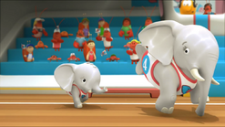 Elephant62