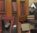 Библиотени