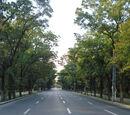 Lista străzilor din sectorul 1