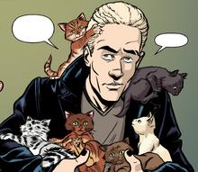 Six cats-0