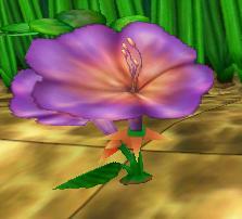 File:Hibiscus.JPG