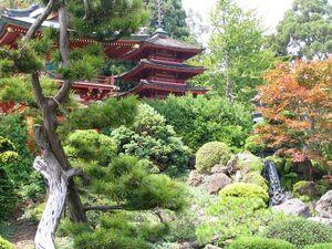 Japaneseteagardensf.jpg