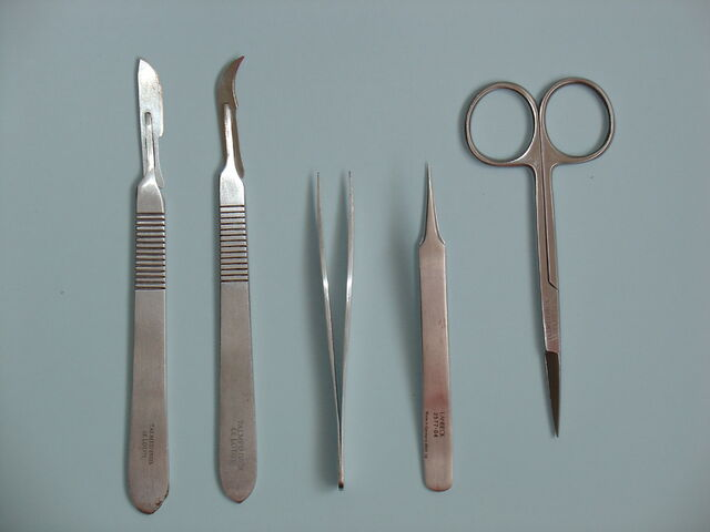 檔案:Dissection tools.jpg